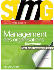 Management Foucher Terminale stmg