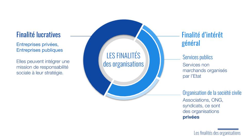 finalités des organisations