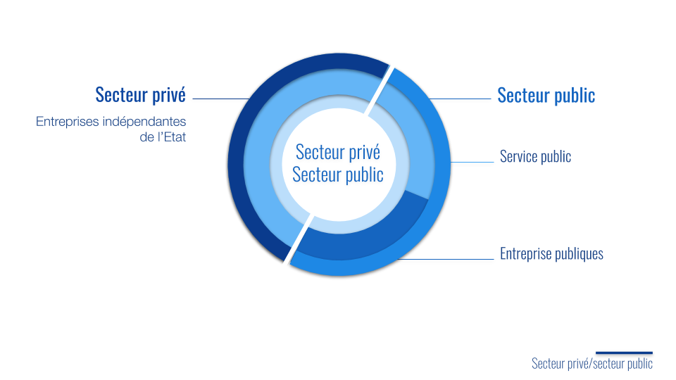 Secteur privé Secteur public Organisation